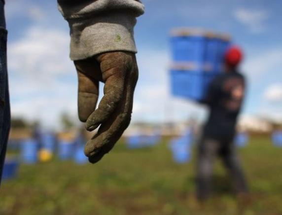 Lavoro o sfruttamento dei migranti? Seminario ad Ancona il 26 febbraio