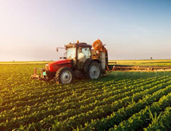 PNRR approvato da consiglio ministri penalizza agricoltura